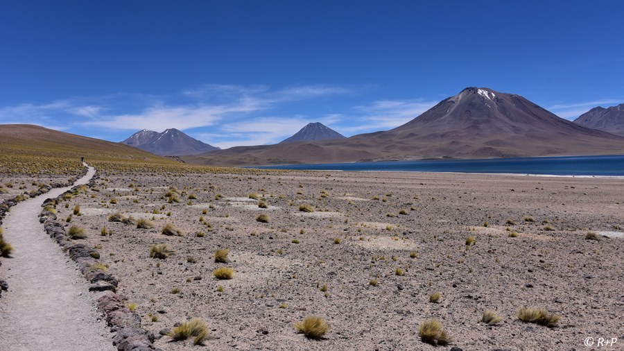 Chile Reise See Miscanti
