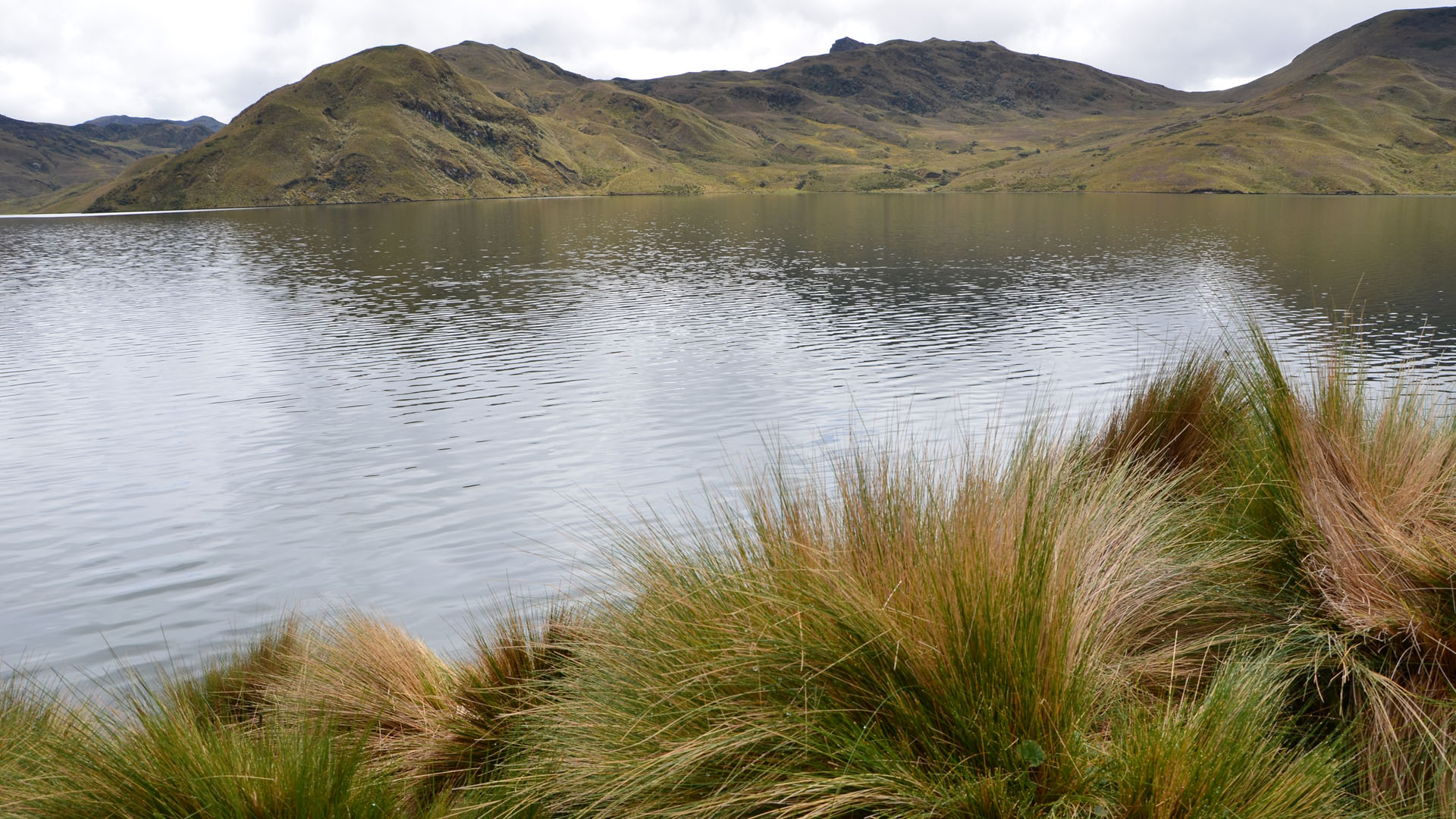 Laguna Mica im Nationalpark Antisana