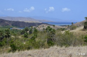 Inselwelt Nationalpark Komodo