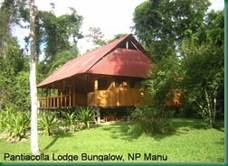 pantiacolla-lodge-bungalow-nationalpark-manu