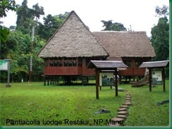 pantiacolla-lodge-restaurant-nationalpark-manu