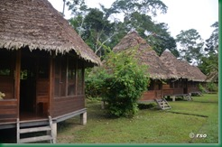 yine-lodge-nationalpark-manu-bungalows