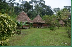 yine-lodge-nationalpark-manu-garten-mit-bungalows